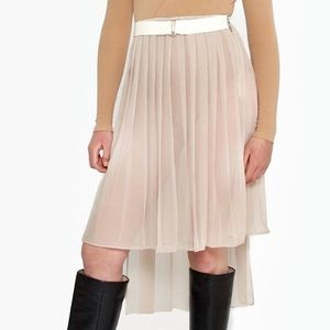 Sheer Nude Pleated Skirt Asymmetrical